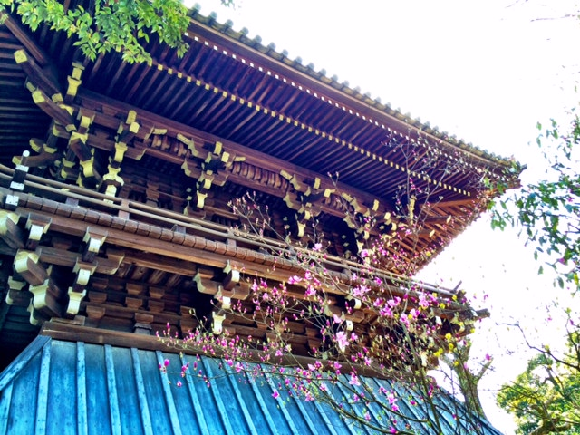 Make sure you look up. The detailing on temples and shrines is a display of true artistic mastery.