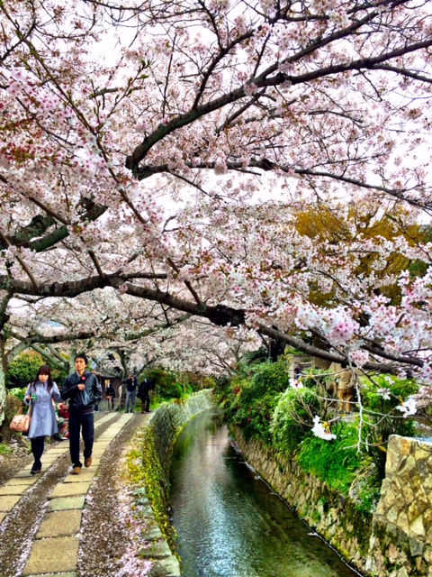 It's a long route, but there is lots to see along the way.  During cherry blossom season, vendors set up stands along the pathway to sell handmade goods and snacks.